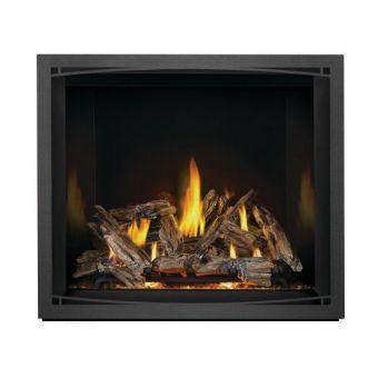 Gas Burning Fireplace | Elevation EX42N
