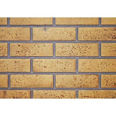 Napoleon Sandstone Brick Panels